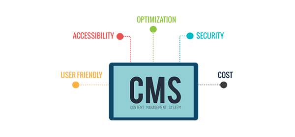 CMS web design in mumbai
